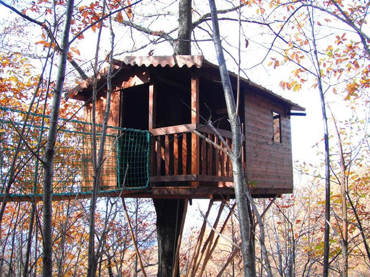 Casa albero conca
