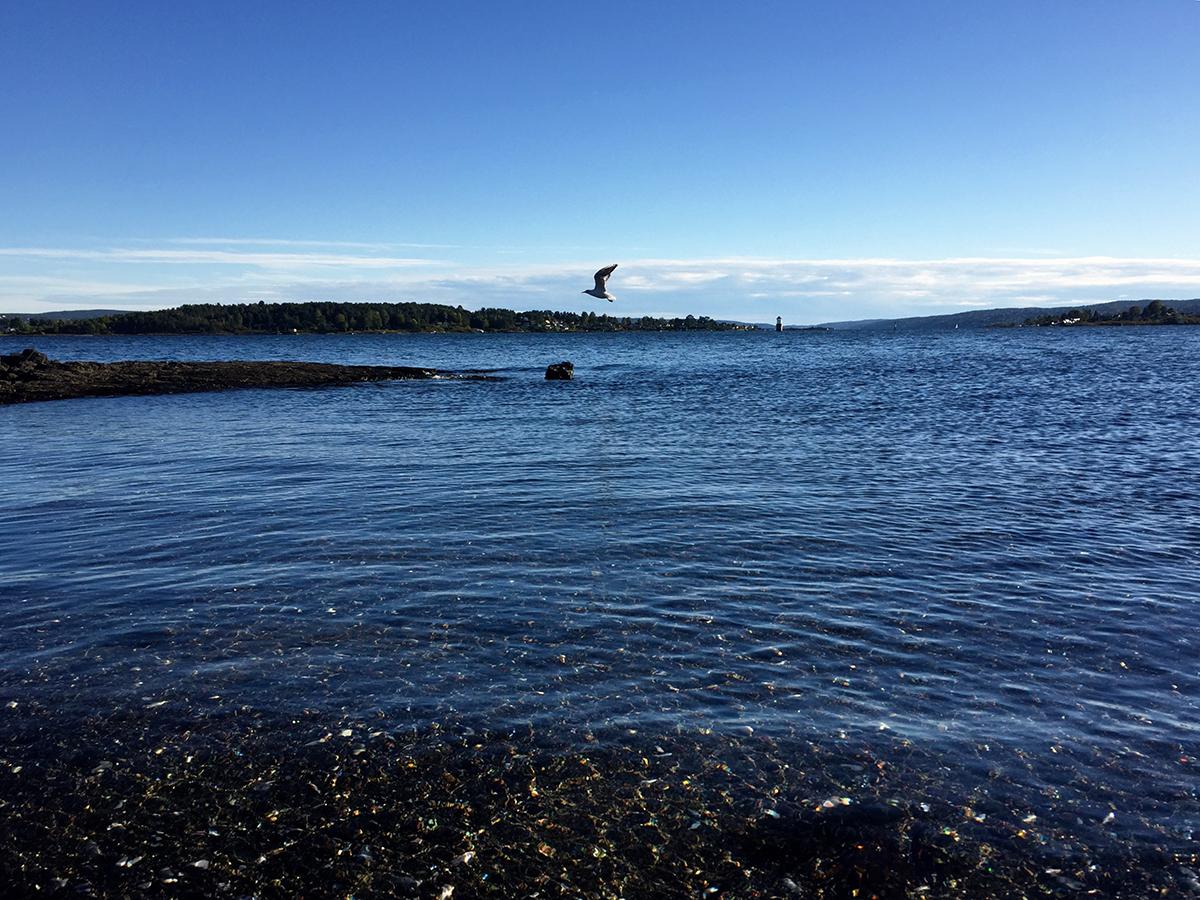 Oslo Fiordo