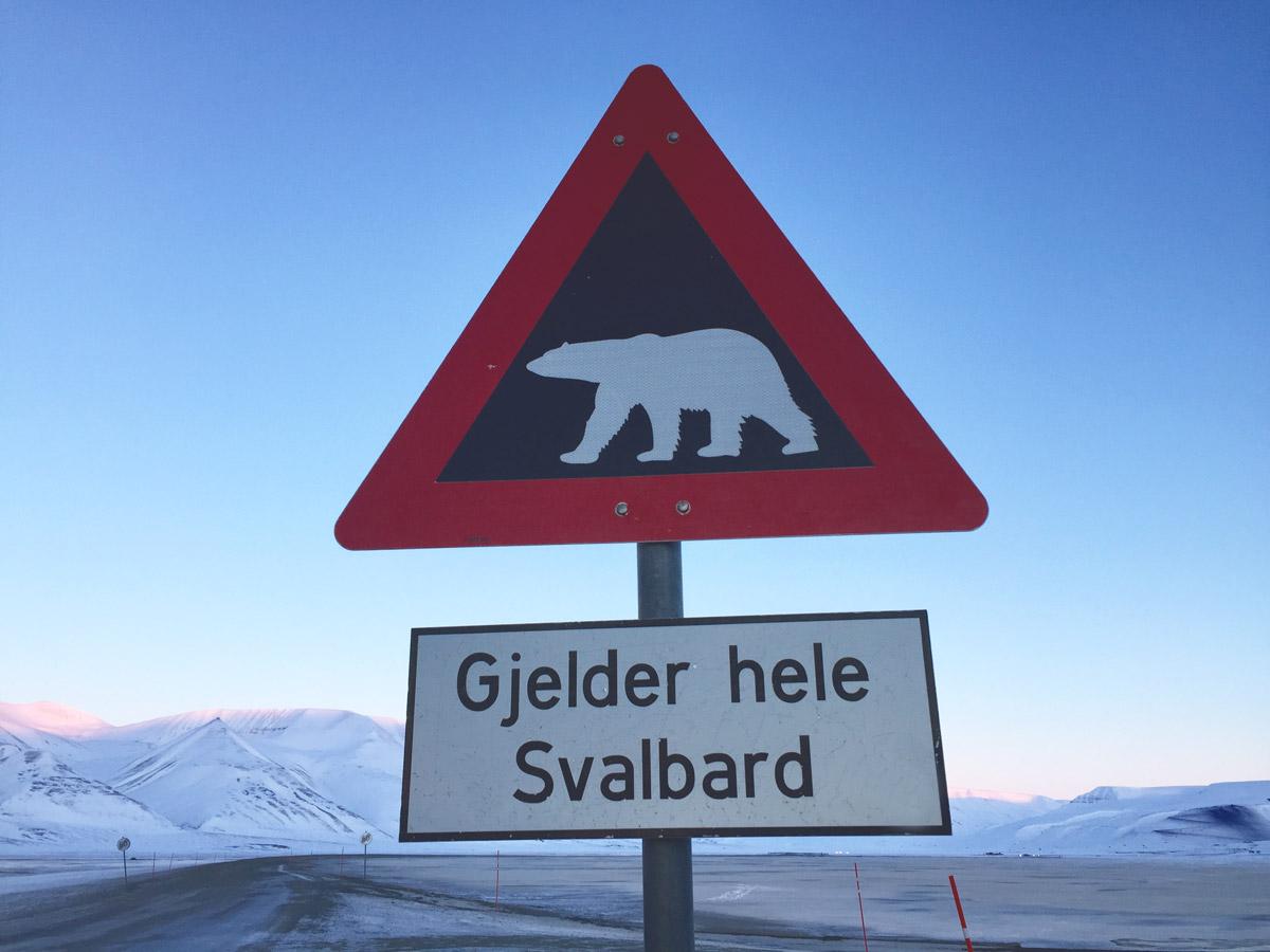 Cartello orsi a Longyearbyen