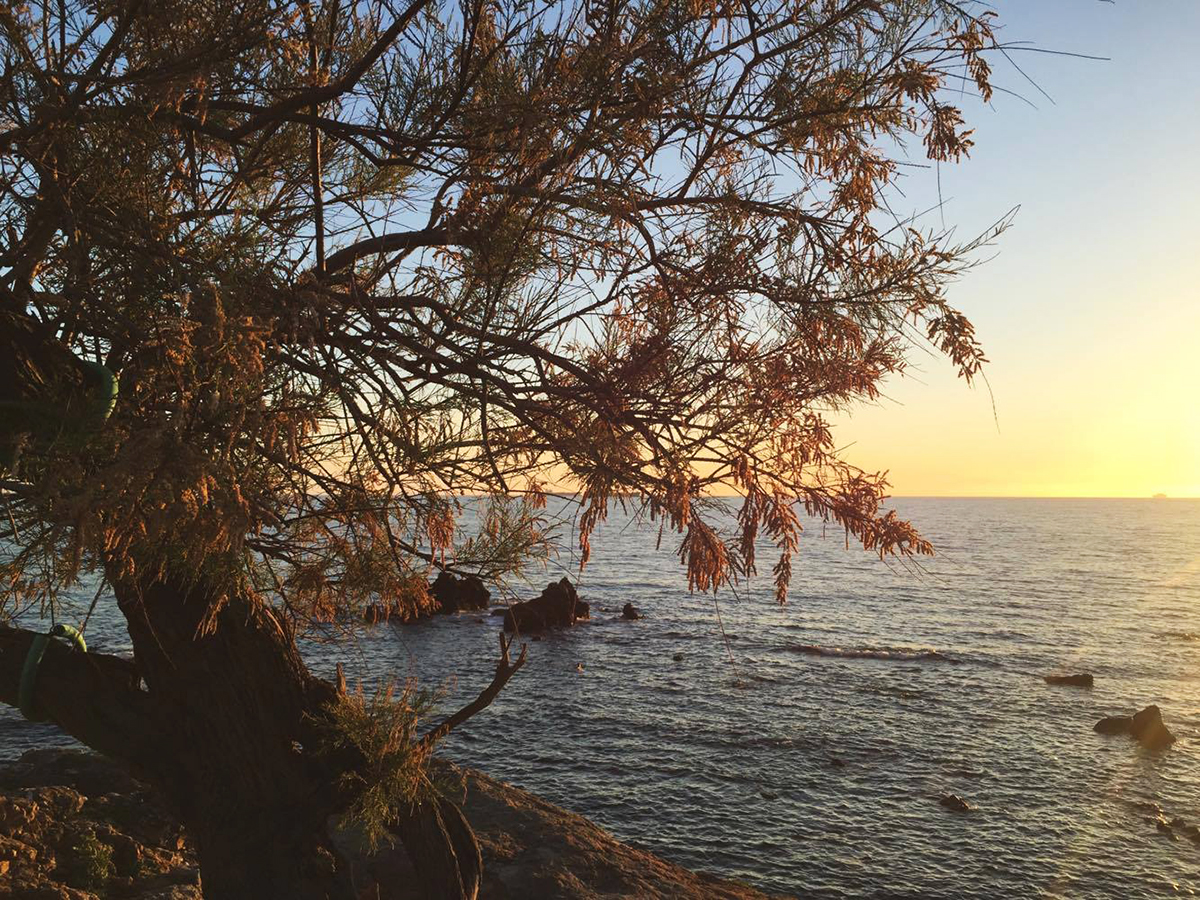 Livorno Tamerice al tramonto